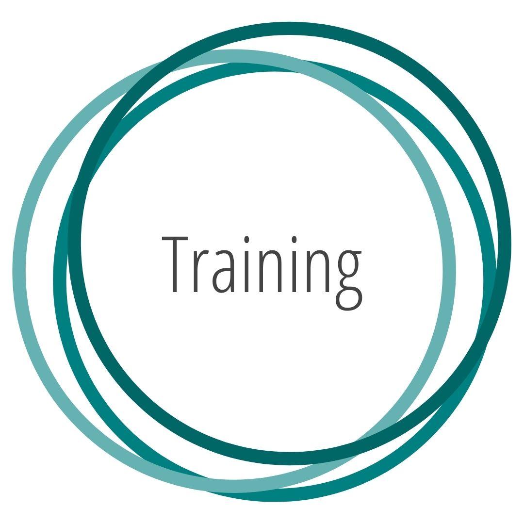Karoline Hanelt - Strahlkraft Facilitation - Unterseiten - Mein Versprechen - Training